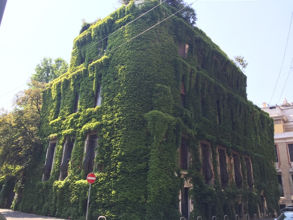 Vine Covered home, Milan